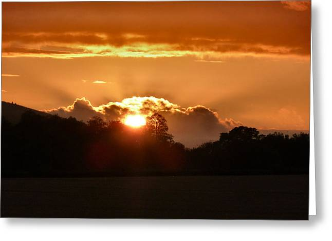 Sunset Greeting Card by Debra Collins