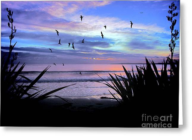 Sunset Down Under Greeting Card by Karen Lewis