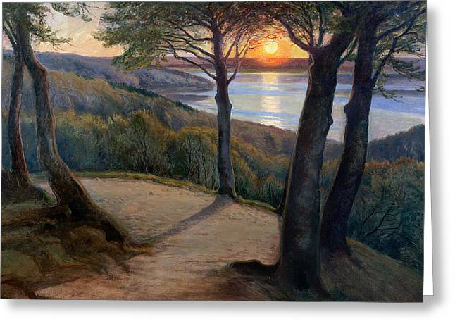 Sunset Greeting Card by Hans Agersnap
