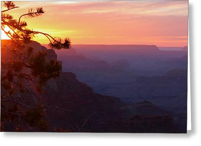 Sunset In Grand Canyon Greeting Card by Olga Vlasenko
