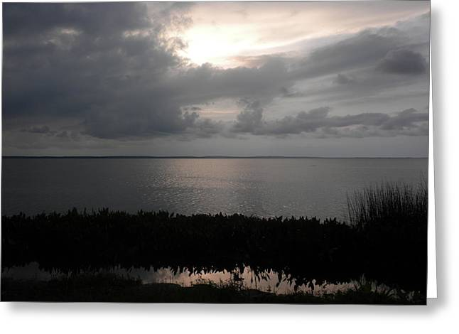 Sunset In Silver Greeting Card by Erica Breetz