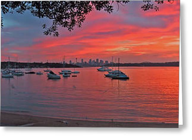 Sunset In Sydney Greeting Card