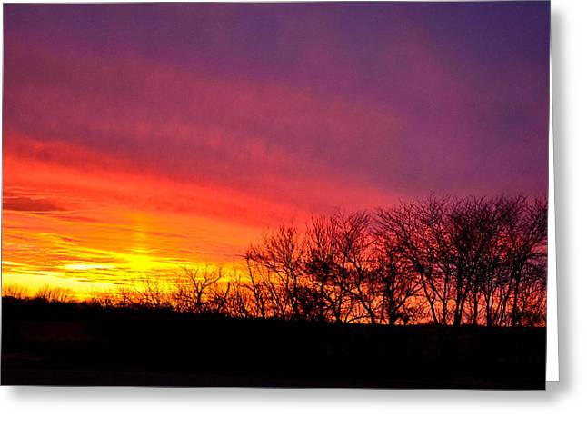 Sunset In Trees Greeting Card by Julio n Brenda JnB