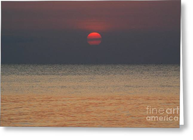 Sunset In Zanzibar Greeting Card by Alan Clifford