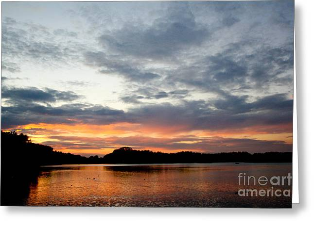 Sunset Greeting Card by Jo
