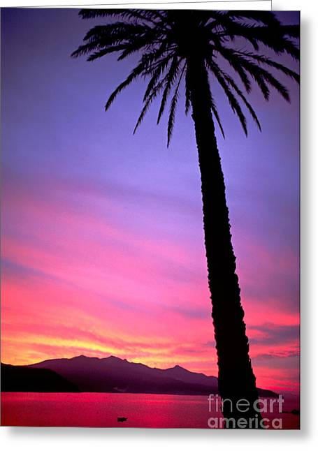 Greeting Card featuring the photograph Sunset by Luciano Mortula