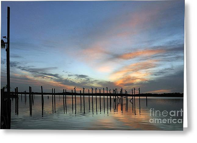 Greeting Card featuring the photograph sunset marina Everglades by Dan Friend