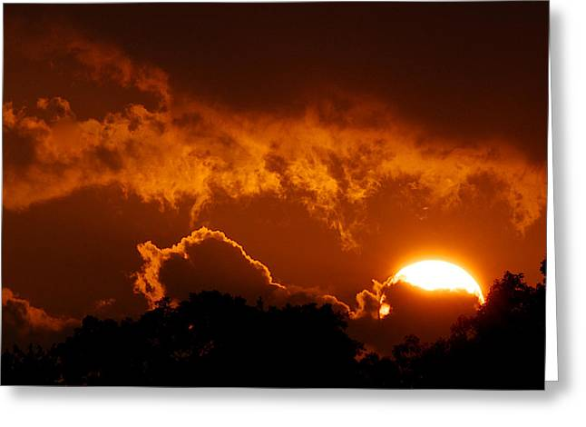Sunset On Fire Greeting Card by Kathi Isserman