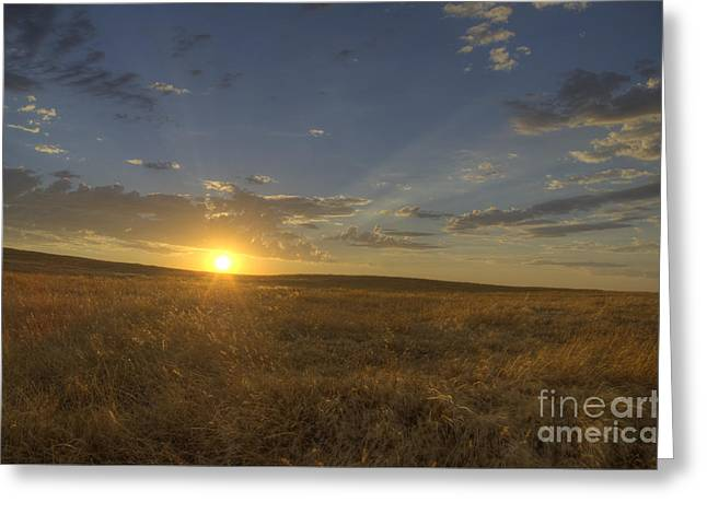 Sunset On The Prairie Greeting Card by Jim and Emily Bush
