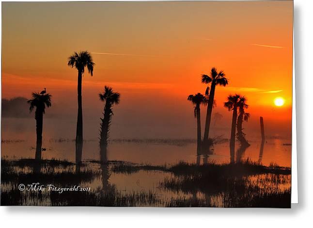 Sunset On Viera Wetlands Greeting Card