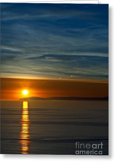 Sunset Over Catalina Greeting Card by Sonny Marcyan