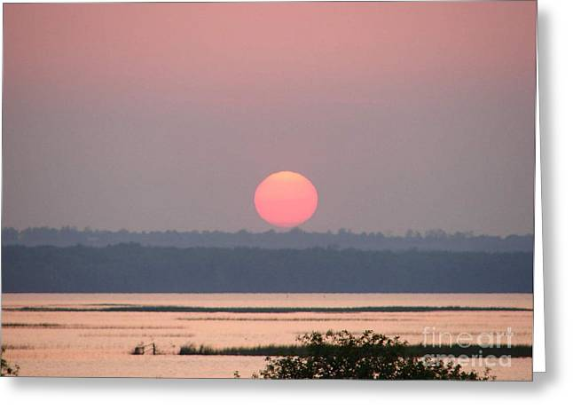 Sunset Over Cook's Bay Greeting Card