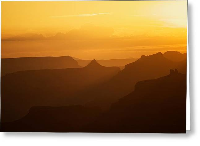 Sunset Over Grand Canyon Greeting Card by C Thomas Willard