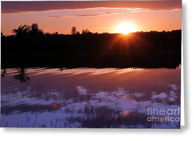Sunset Over The Island Greeting Card by Sophie Vigneault