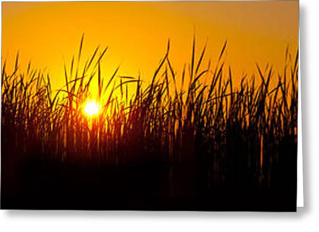 Sunset Over The Prairie Greeting Card by Steve Gadomski