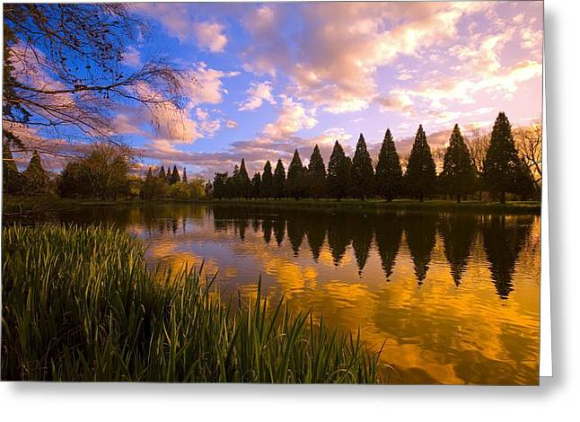 Sunset Reflection On A Pond, Portland Greeting Card by Craig Tuttle