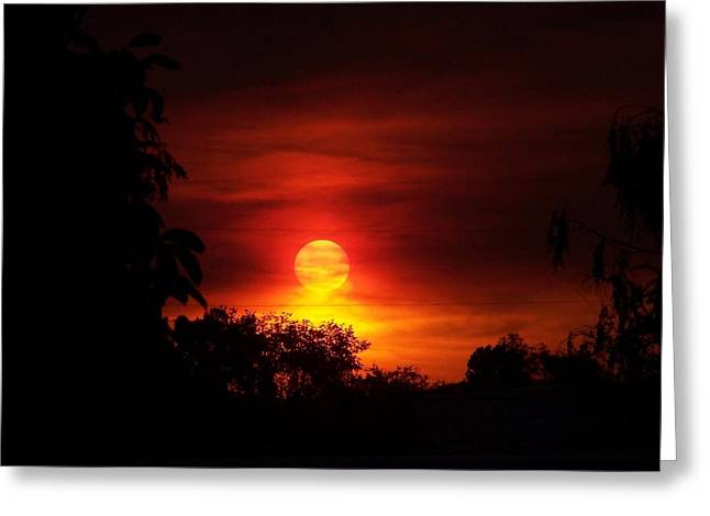 Sunset Greeting Card by Richard Adams