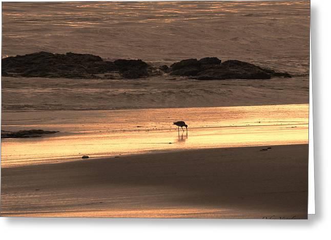 Sunset Shimmer Beach Greeting Card by Debra     Vatalaro
