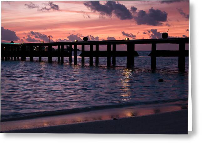 Sunset Greeting Card by Shirley Mitchell