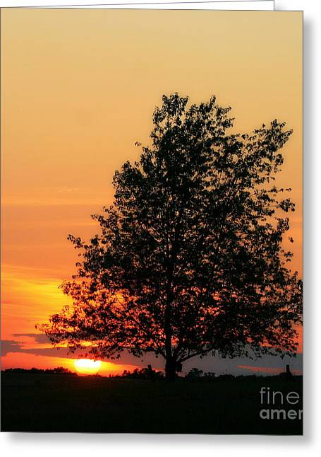 Sunset Square Greeting Card by Angela Rath