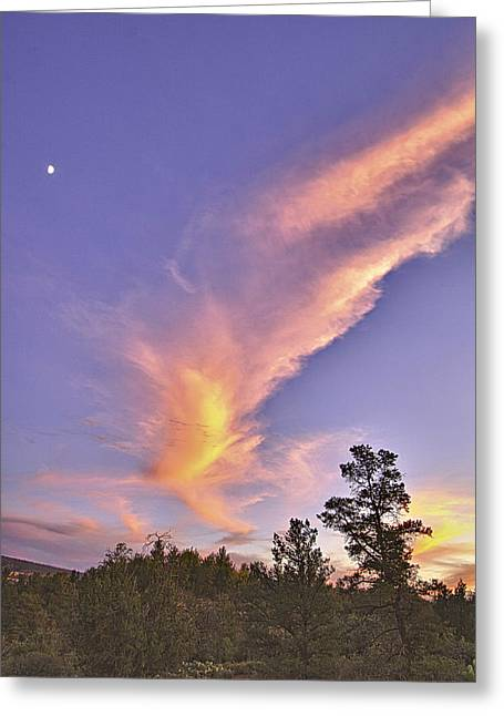 Sunset Swoosh Greeting Card by Forest Alan Lee