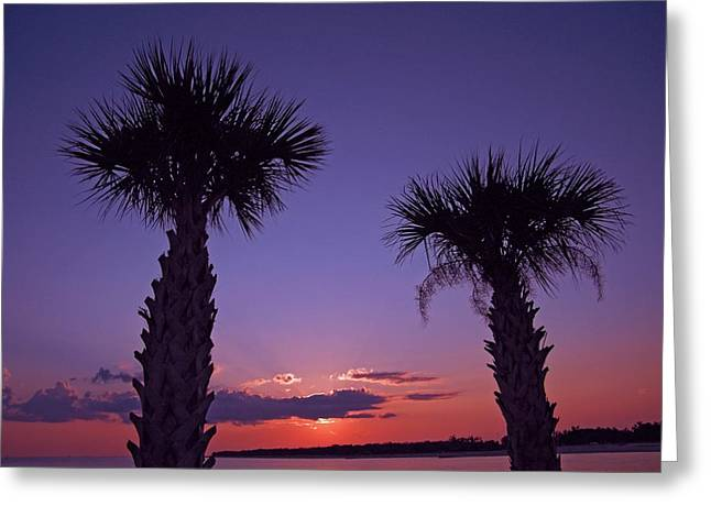 Greeting Card featuring the photograph Sunset Through The Palms by Brian Wright