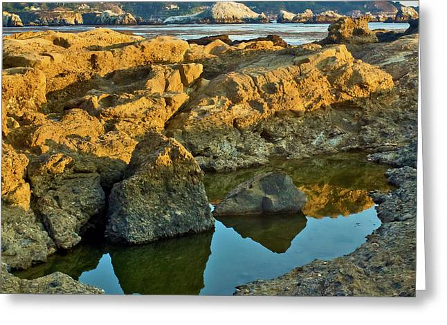Sunset Tidepool Larry Darnell Point Lobos Central California Landscape Greeting Card
