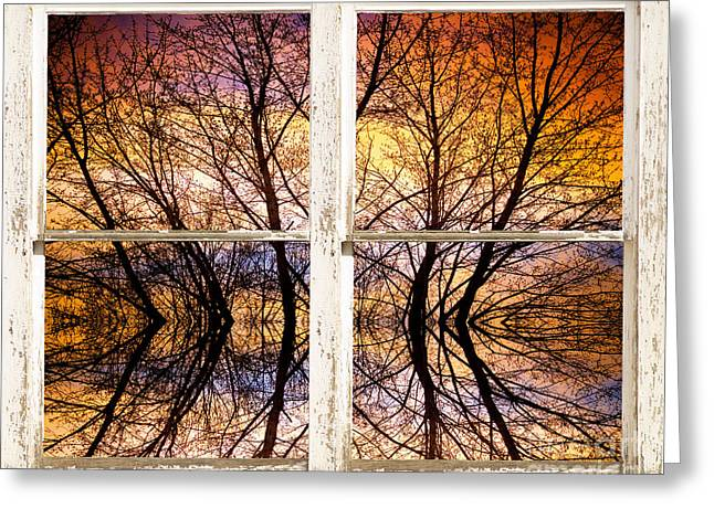 Sunset Tree Silhouette Colorful Abstract Picture Window View Greeting Card by James BO  Insogna