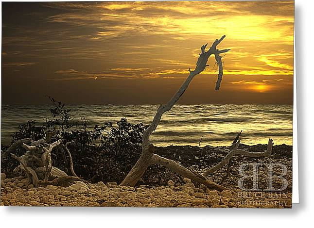 Sunset West II Greeting Card by Bruce Bain