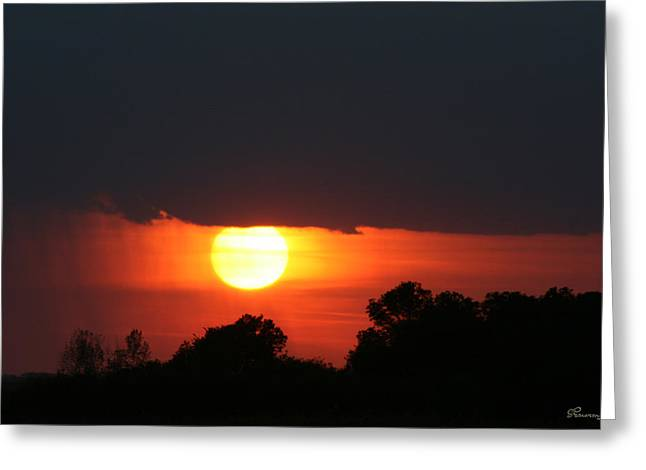 Sunshine In Rain Greeting Card by Andrea Lawrence