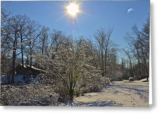 Sunshine In The Snow Greeting Card by Nancy Rohrig