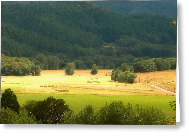 Sunshine In The Valley Greeting Card by Katie Wing Vigil