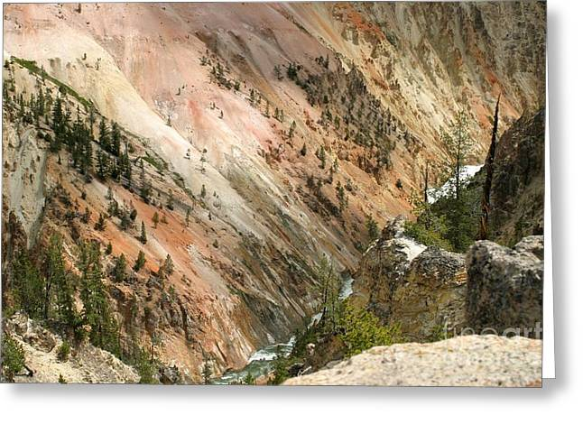 Sunshine On Grand Canyon In Yellowstone Greeting Card by Living Color Photography Lorraine Lynch