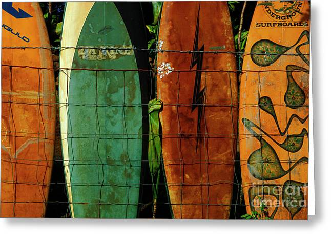 Surfboard Fence 1 Greeting Card by Bob Christopher