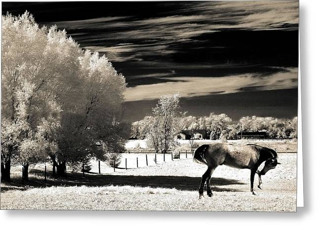Surreal Fantasy Horse Landscape Greeting Card by Kathy Fornal