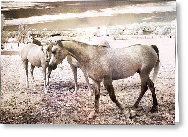 Surreal Horses Dreamy Infrared Landscape Greeting Card by Kathy Fornal