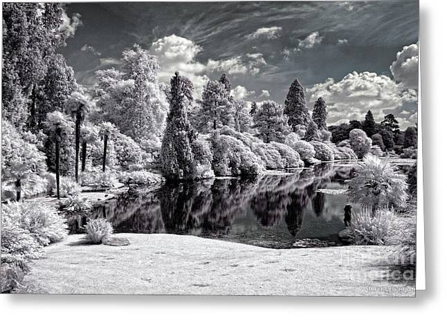 Surreal Lake - Infrared Photography Greeting Card by Steven Cragg