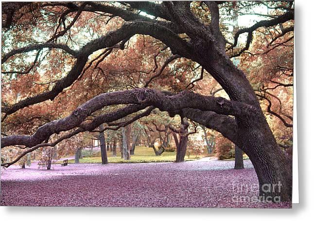 Surreal Old Oak Tree South Carolina Fall Colors Greeting Card by Kathy Fornal