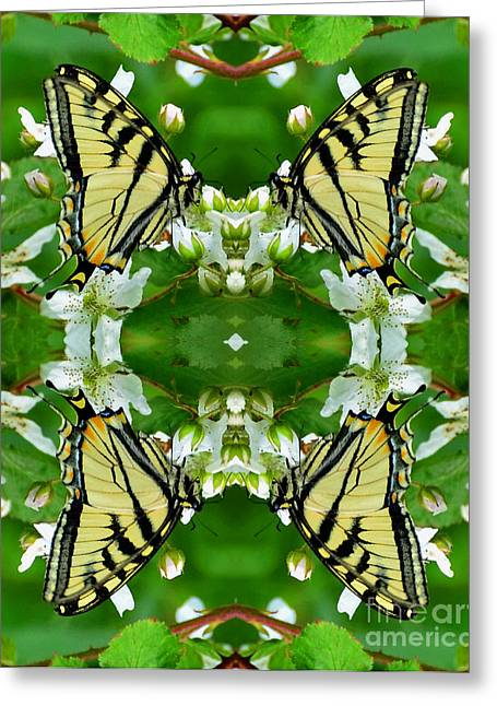 Swallowtail Supreme  Greeting Card by Whispering Feather Gallery