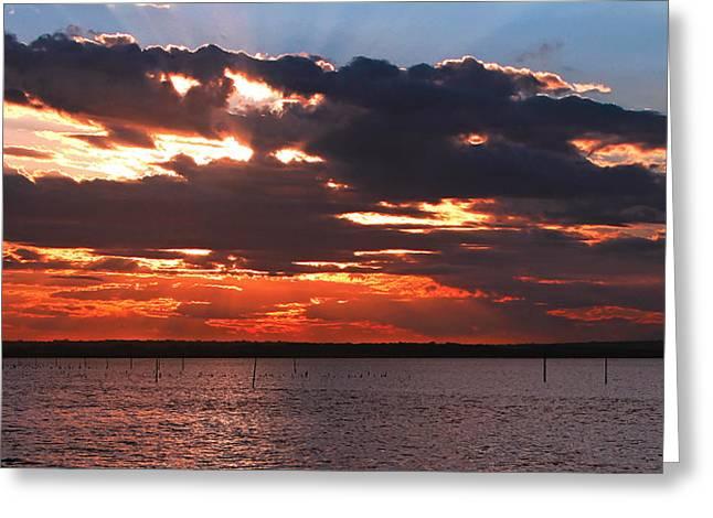 Swan Bay Sunset Greeting Card