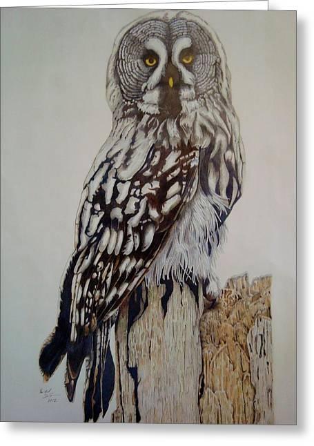Swedish Uwl Greeting Card by Per-erik Sjogren