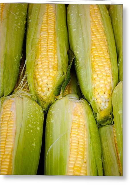 Sweet Corn Greeting Card by Jen Morrison