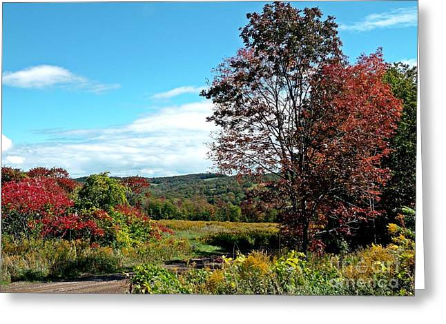 Greeting Card featuring the photograph Sweet Scent Of Autumn by Christian Mattison