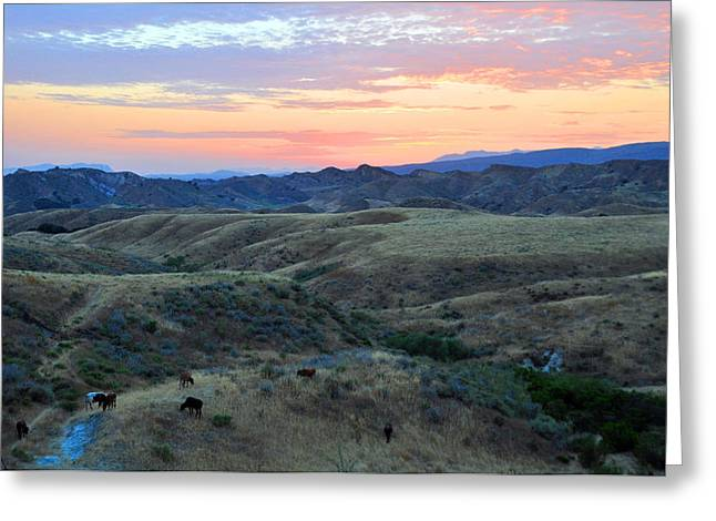 Sweet So Cal Sunset Greeting Card by Lynn Bauer