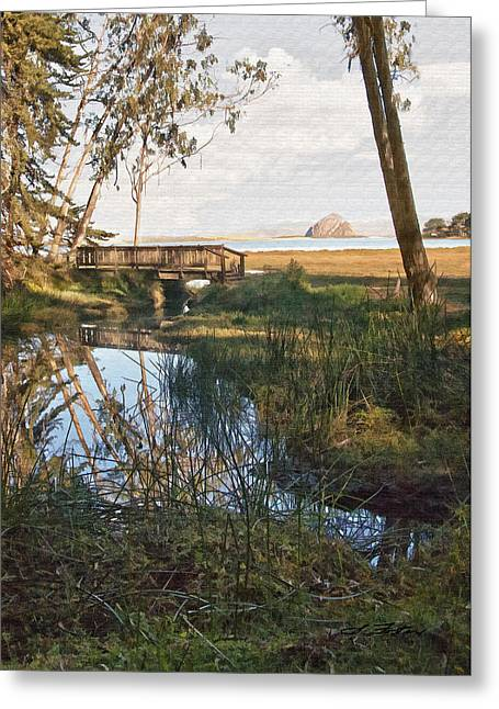 Sweet Water Reflection  Greeting Card by Sharon Foster