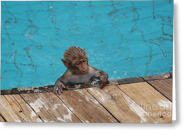 Swim Boy Greeting Card