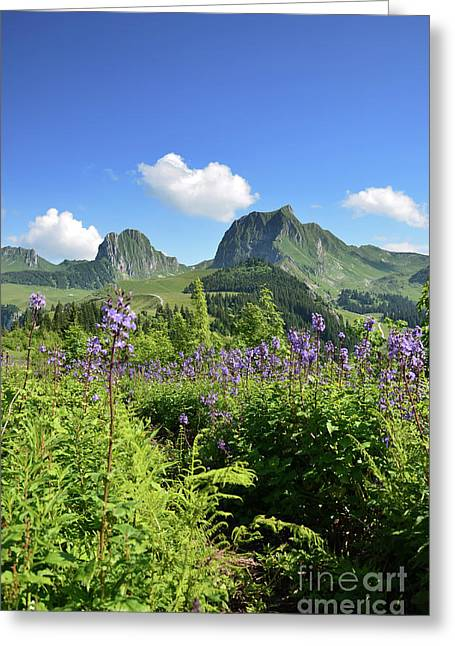 Swiss Alps Greeting Card by Bruno Santoro