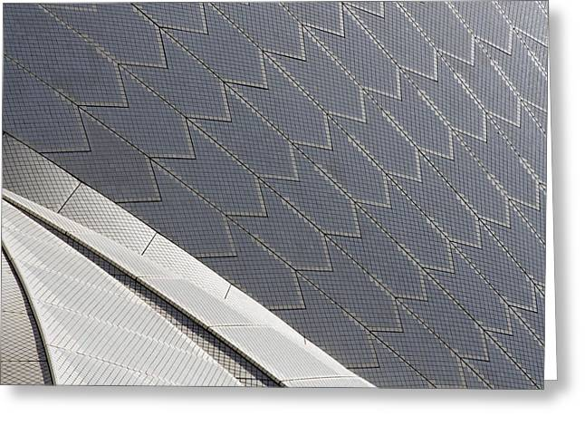 Sydney Opera House Roof Greeting Card by Martin Cameron