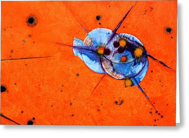Symphony - Three Greeting Card by Mudrow S