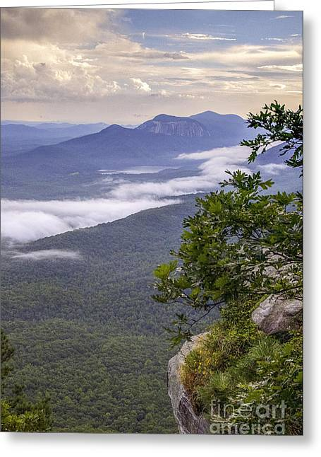 Table Rock And Yellow Flowers Greeting Card by David Waldrop